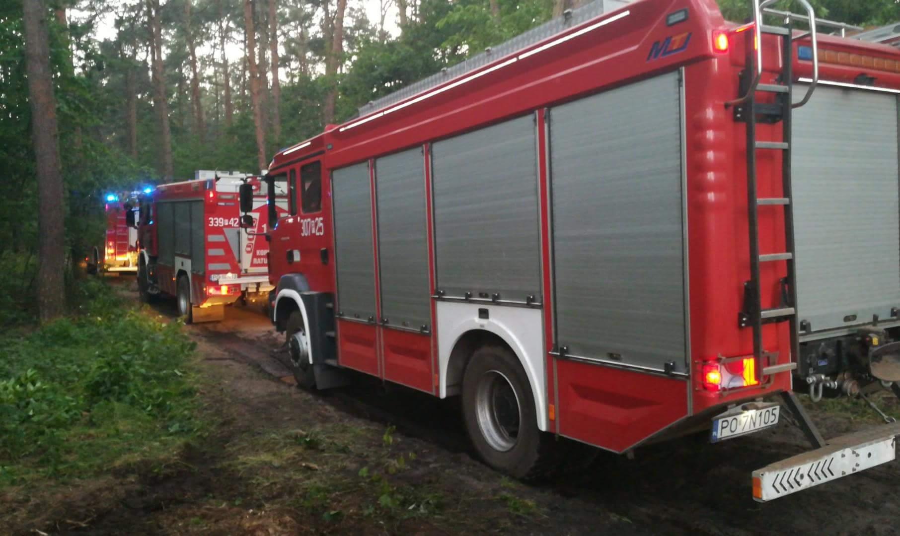 Pożar lasu głuszyna - OSP Poznań Głuszyna