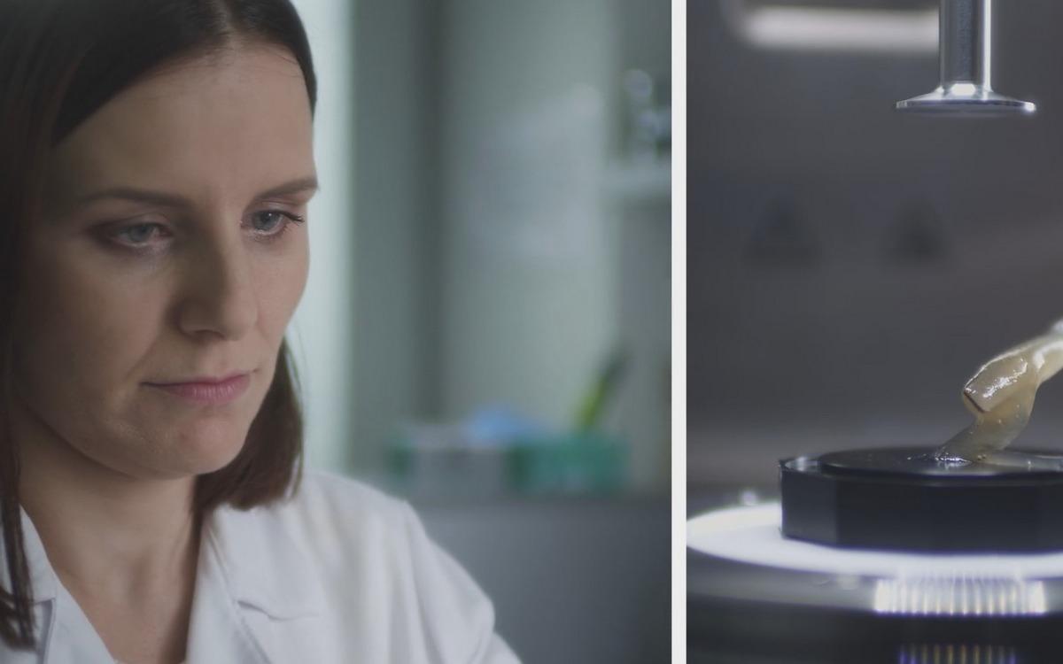 bioniczna trzustka - https://fundacjabirn.pl/wspieraj-drukarke-3d/