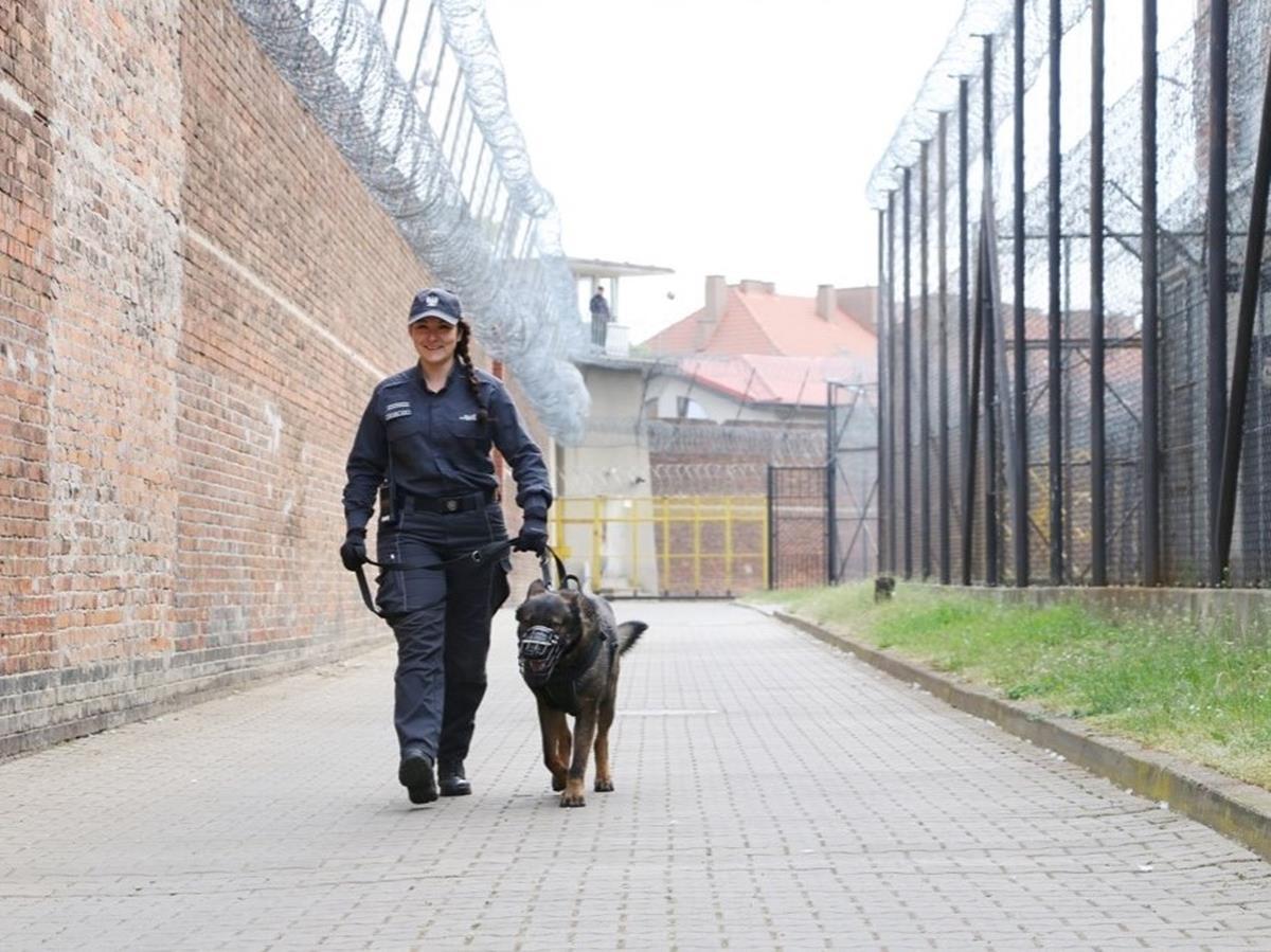 więzienie wronki - Zakład Karny we Wronkach