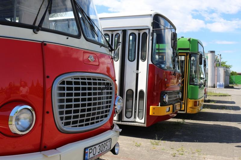 linie turystyczne poznań - MPK Poznań
