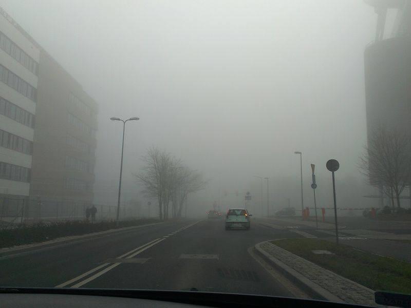 mgła w mieście - Adam Michalkiewicz