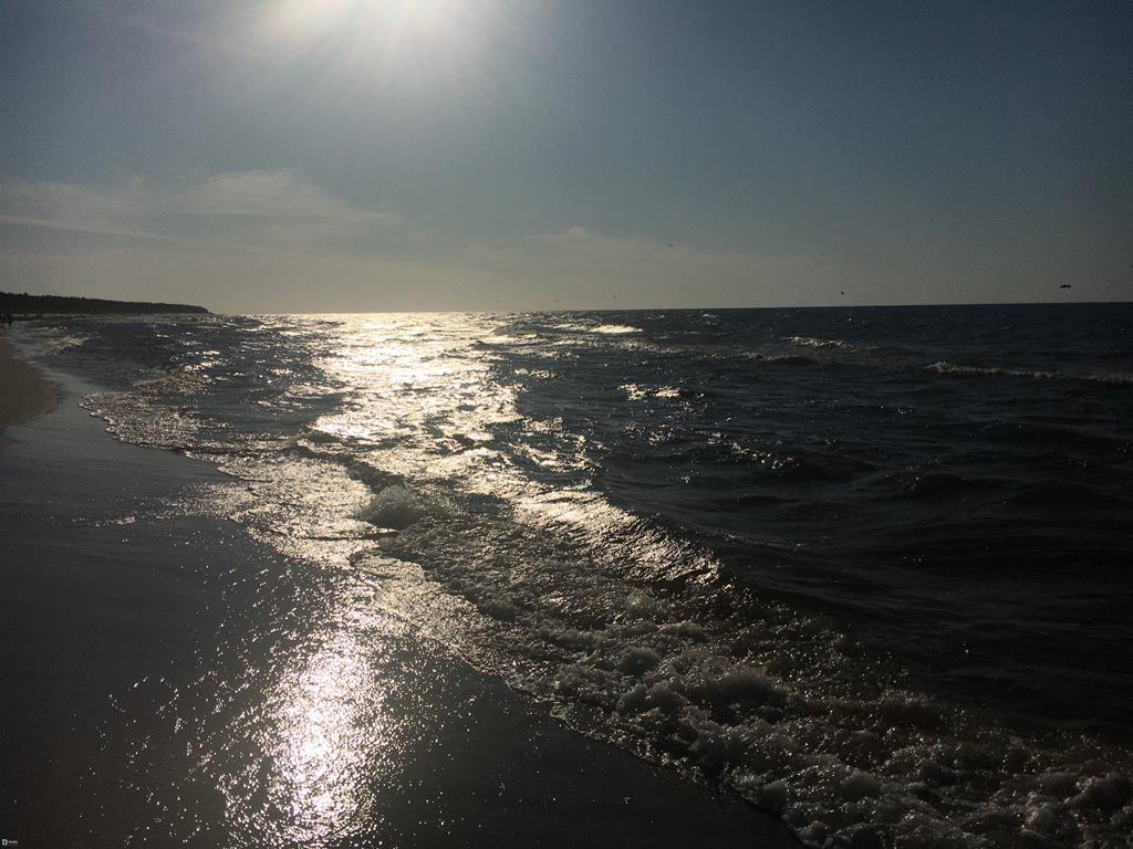morze - Wojtek Wardejn