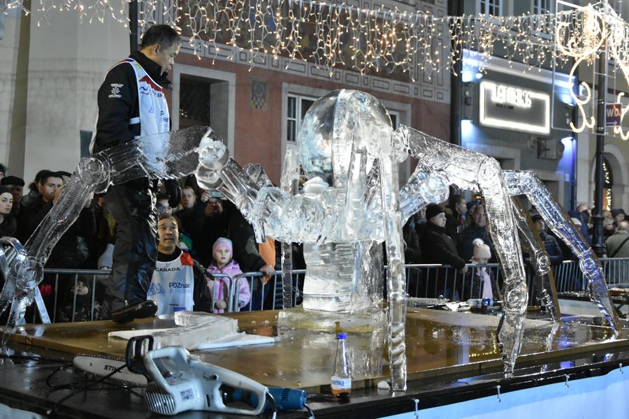 festiwal lodowych rzeźb poznań  - Wojtek Wardejn