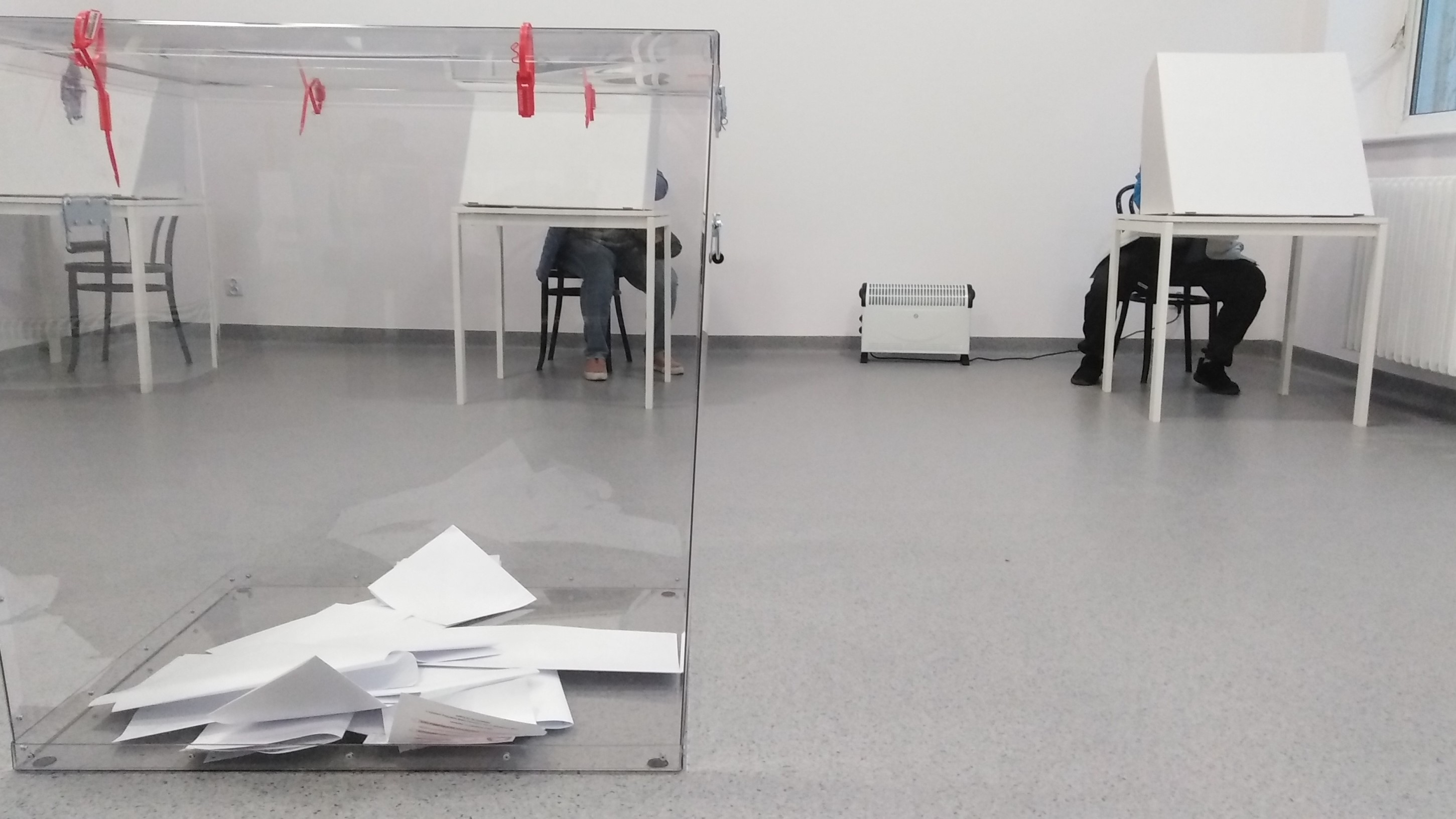 wybory urna głosowanie  - Wojtek Wardejn