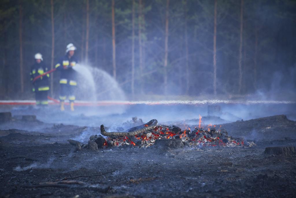 pożar lasu  - Nadleśnictwo Bolewice
