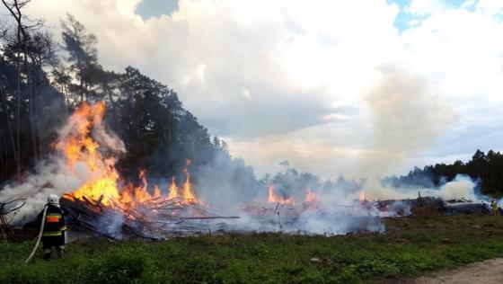 podpalacz konin pożar lasu - Nadleśnictwo Konin