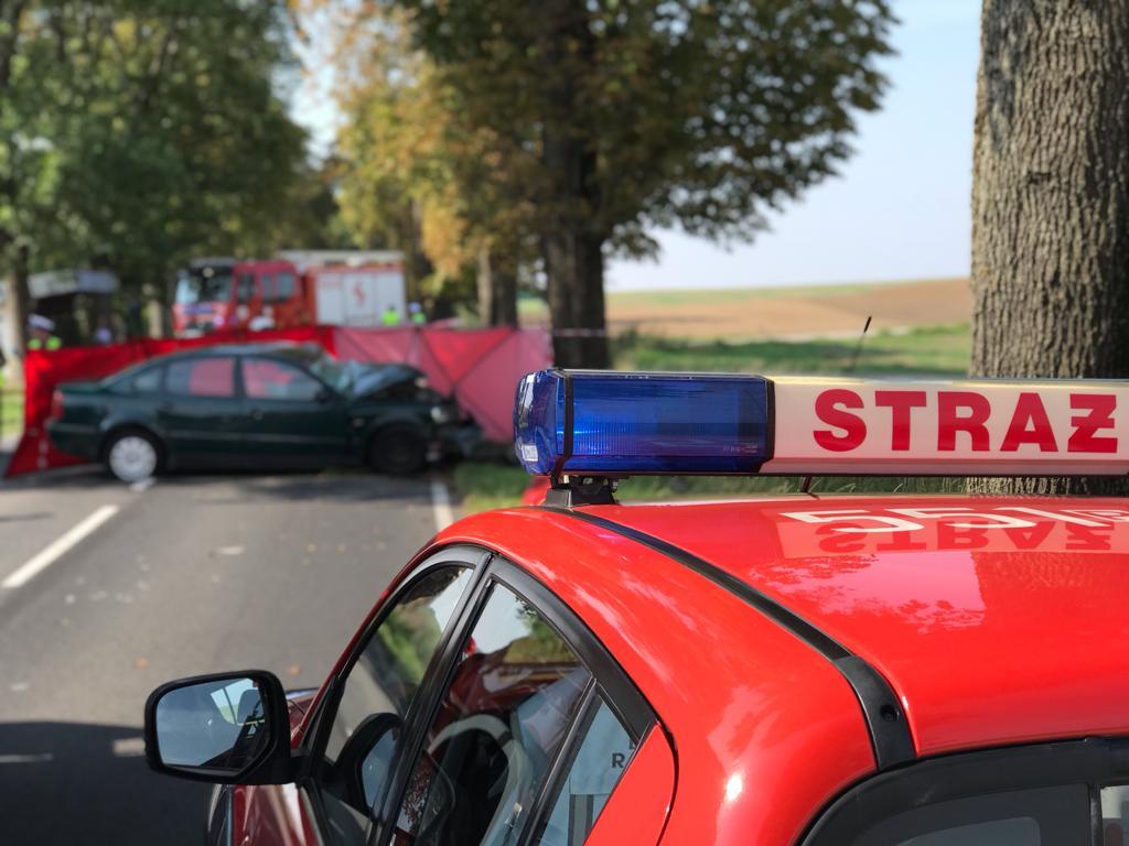 Śmiertelny wypadek pod Piłą. 71-latek wjechał w drzewo - Policja w Pile