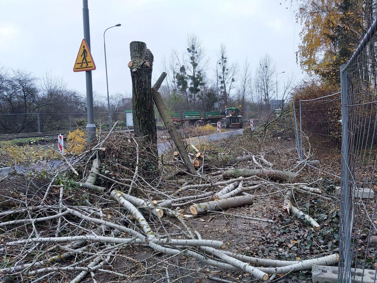 wycinka drzew kurlandzka - Krzysztof Polasik - Radio Poznań