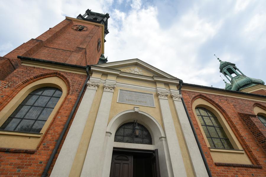 katedra poznań - Wojtek Wardejn