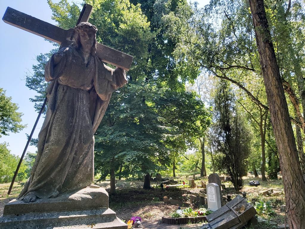 zaniedbany cmentarz ulica samotna w poznaniu - Krzysztof Polasik